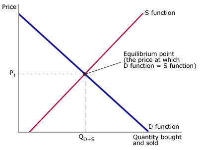 P5 - equilibrium